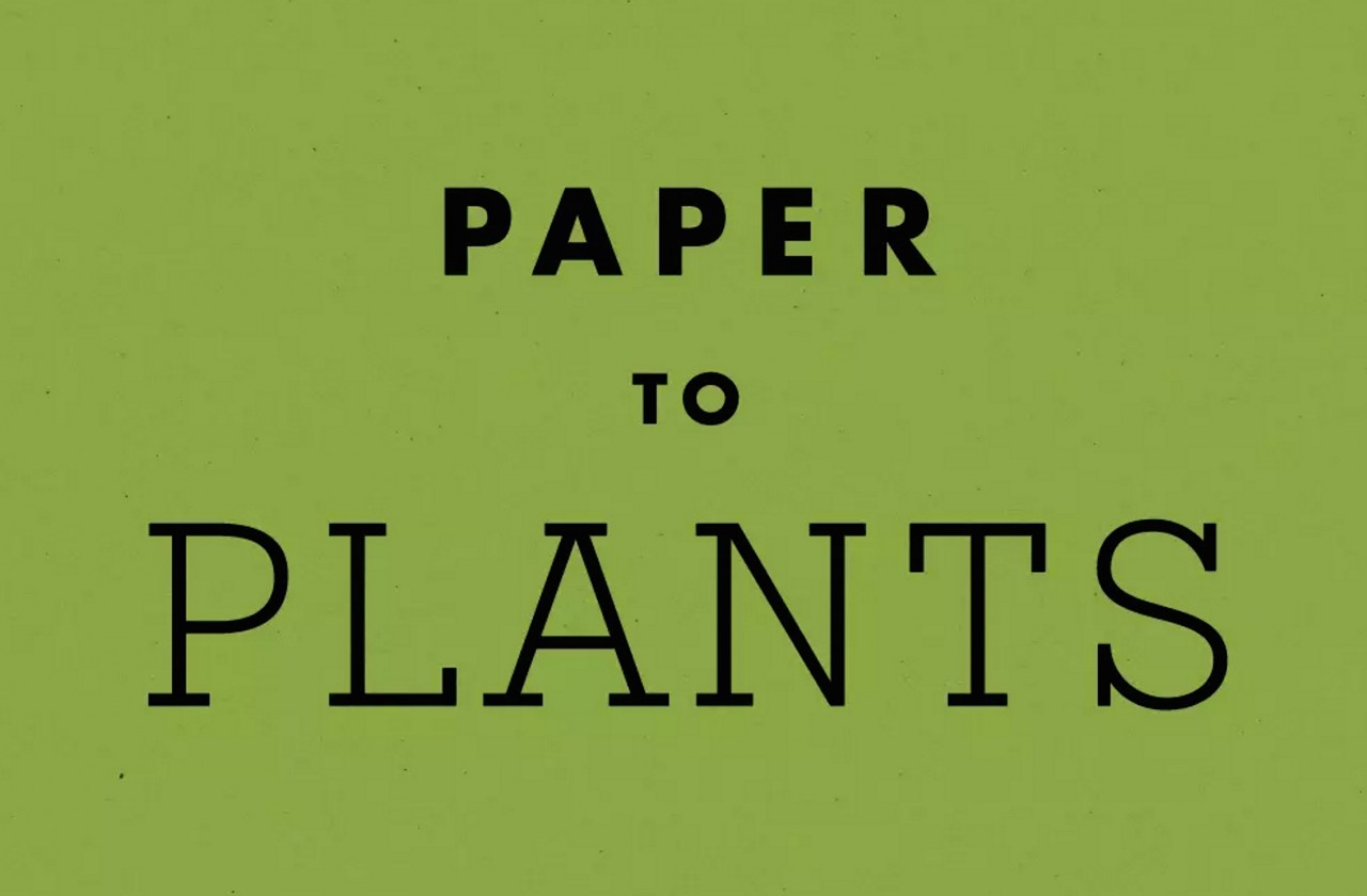 Paper To Plants